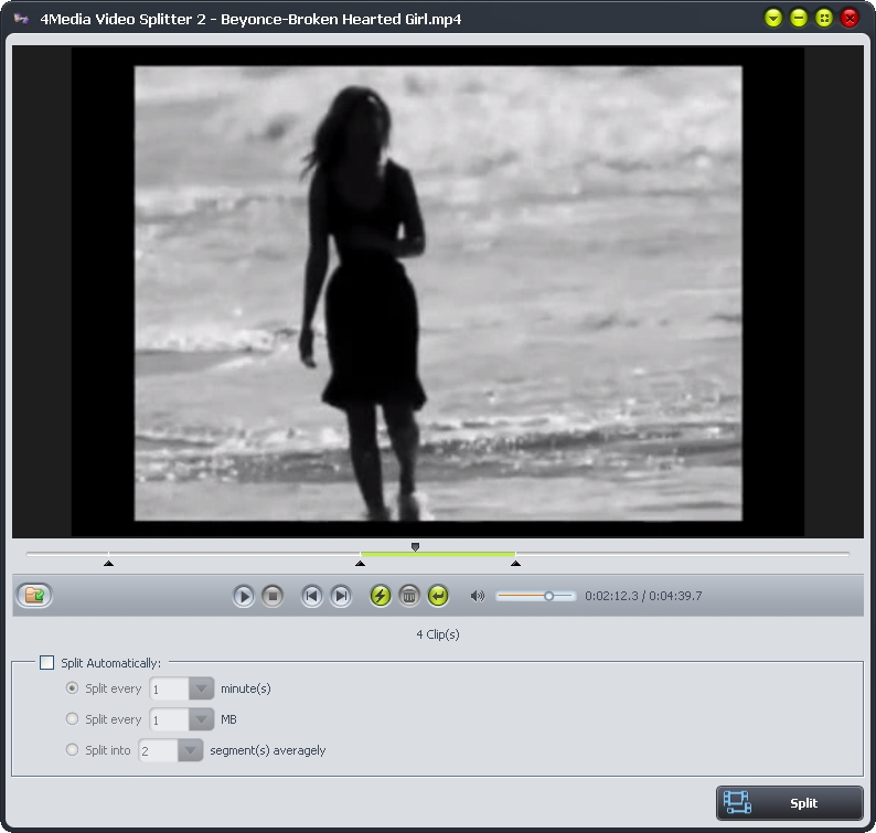 4Media Video Splitter 2.0.1.0111 full